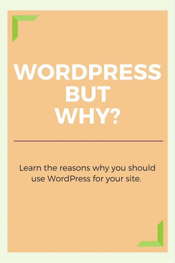 WordPress is the most used platform for websites and blogs. Why is that? Read more on the blog.