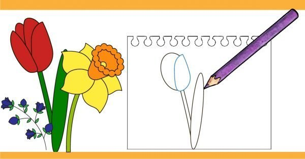 How to draw a flower with step by step tutorial.