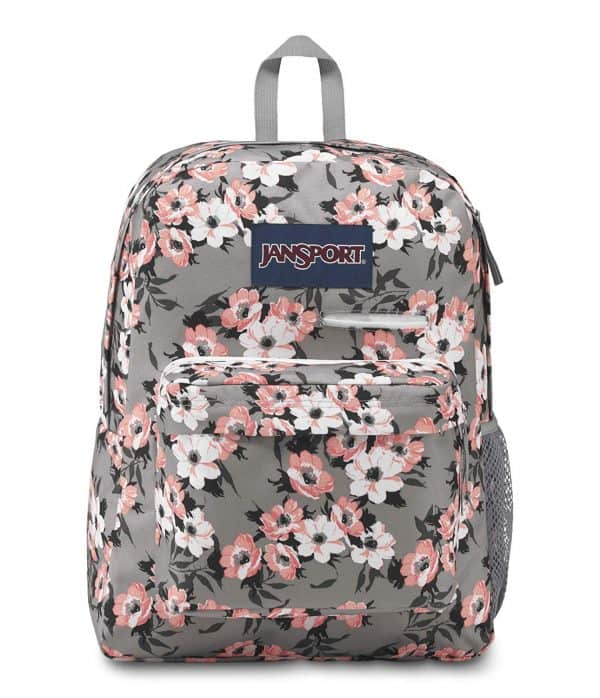 Jansport backpack for hauling teacher supplies.